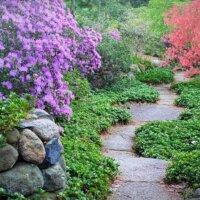 Schmaler Weg als Abgrenzung im Garten