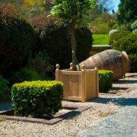 Pflanzkübel und Palmen im mediterranen Garten