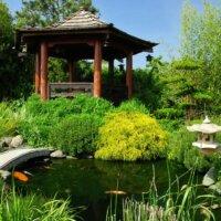 Japanischer Pavillon am Koiteich.
