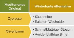 Mediterrane Pflanzen durch winterharte Alternativen ersetzen.