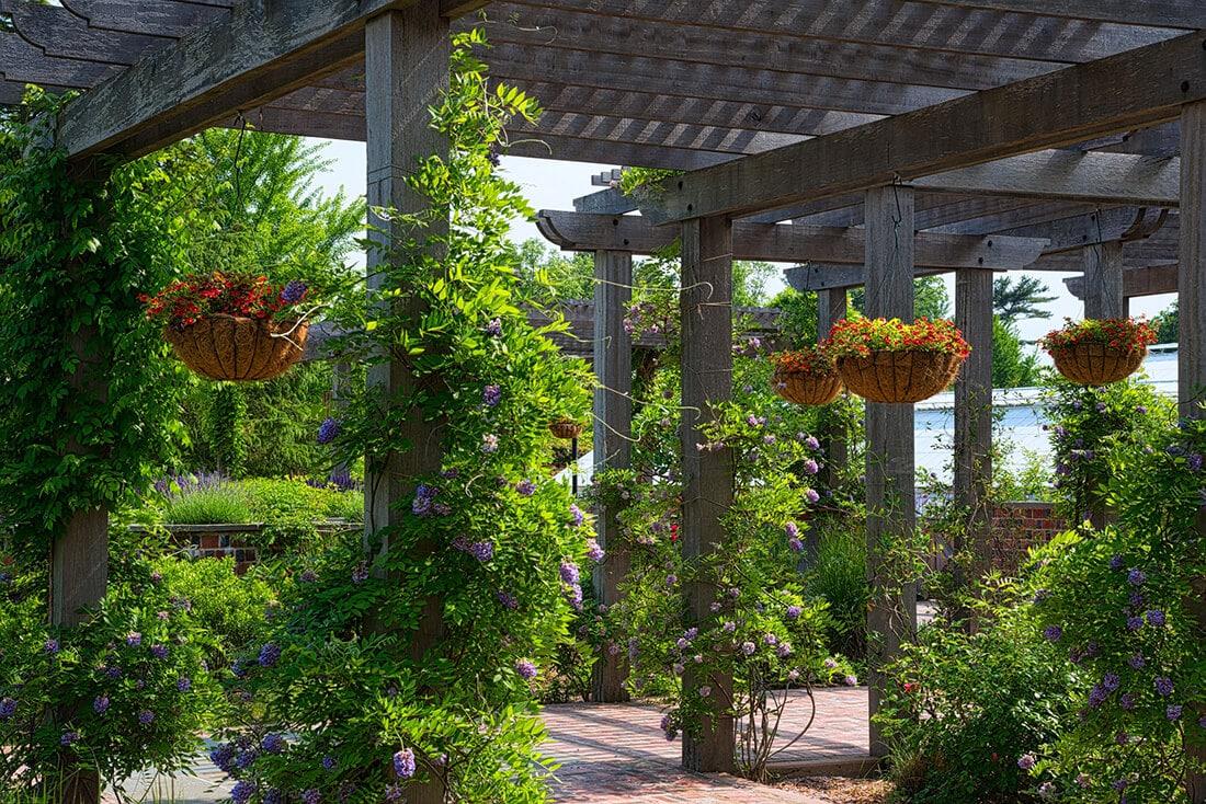 Die Pergola ist kein Pavillon, aber dennoch dekorativ.