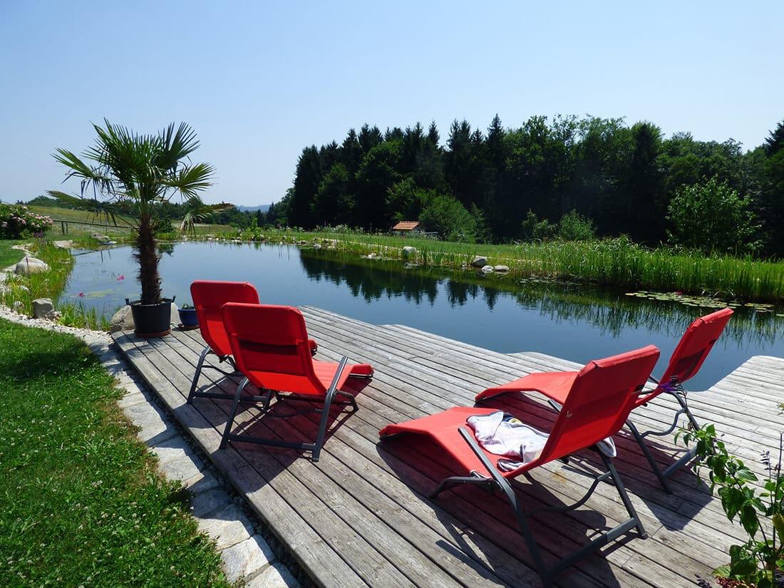 Schwimmteich mit Schwimm- und Regenerationsbereich