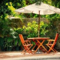 Palmen im mediterranen Garten