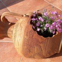 Kleine Blume im mediterranen Pflanzkübel