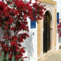 Hauseingang im mediterranen Stil