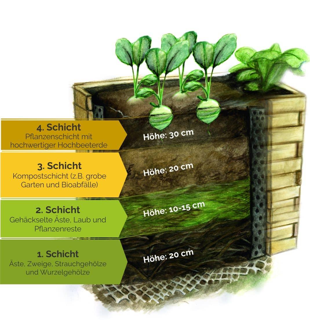 Hochbeet Selber Bauen Befüllen Bepflanzen Der Große Ratgeber