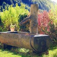 Holzbrunnen aus einem Baumstamm