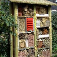 Nisthilfen sind nicht nur für Bienen Gold wert