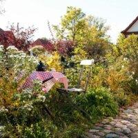 Wilde Gärten bevorzugen Bienen.