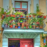 Üppig bepflanzter Balkon in Italien
