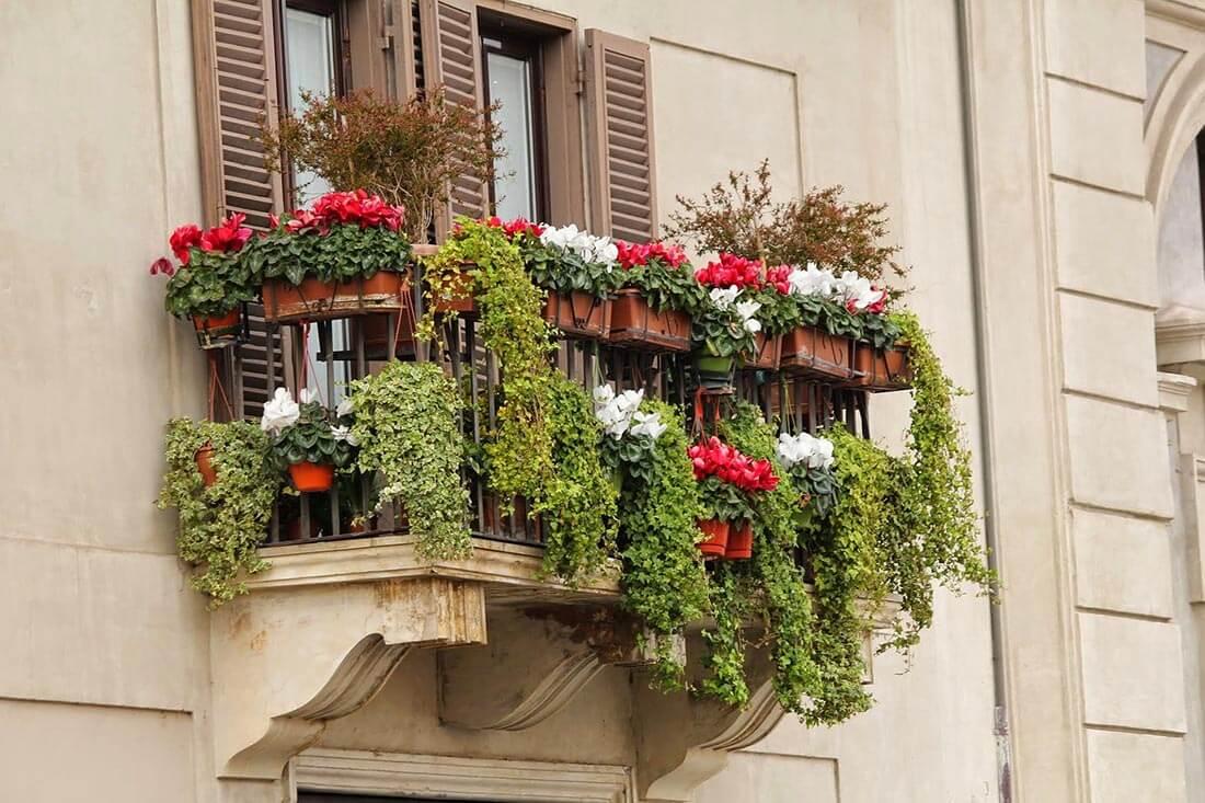 Üppig bepflanzter Balkon
