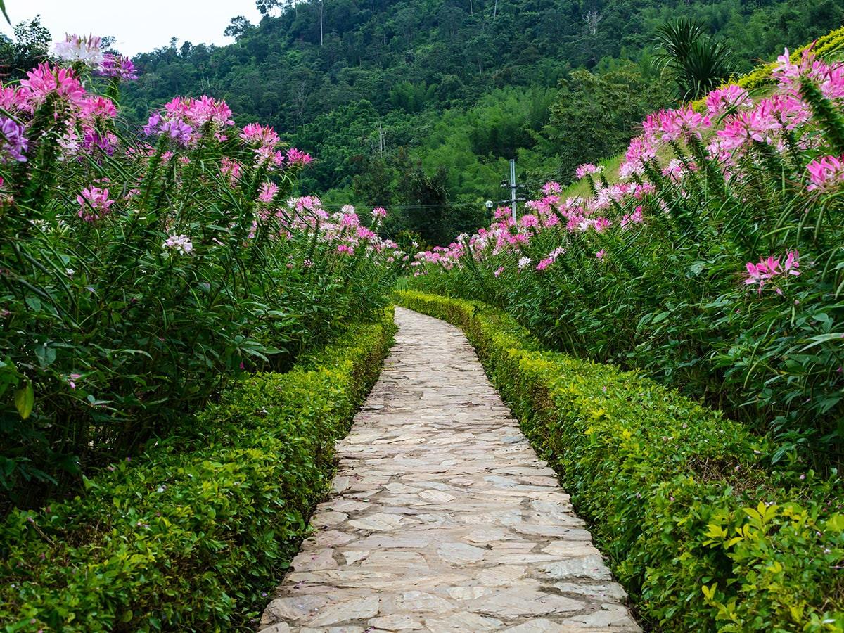 Gartenweg Anlegen Gestalten Ideen Mit Kies