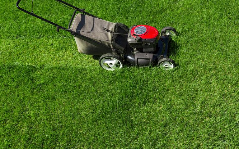 Rasen richtig mähen – Infos zu Uhrzeit  Mittagsruhe & Co.