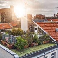 Dachterrasse mit vielen Pflanzen © Shutterstock.com - phoelixDE