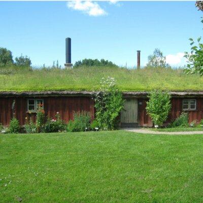Langes, flaches Gartenhaus mit Gründach