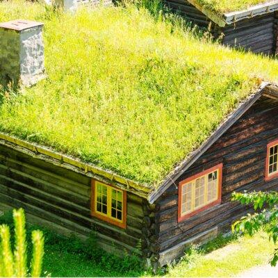 Gründach aus Gras auf einer kleinen Holzhütte © Shutterstock.com - Nanisimova
