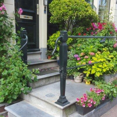 Dichte Bepflanzung passt auch zum Eingang eines Stadthauses