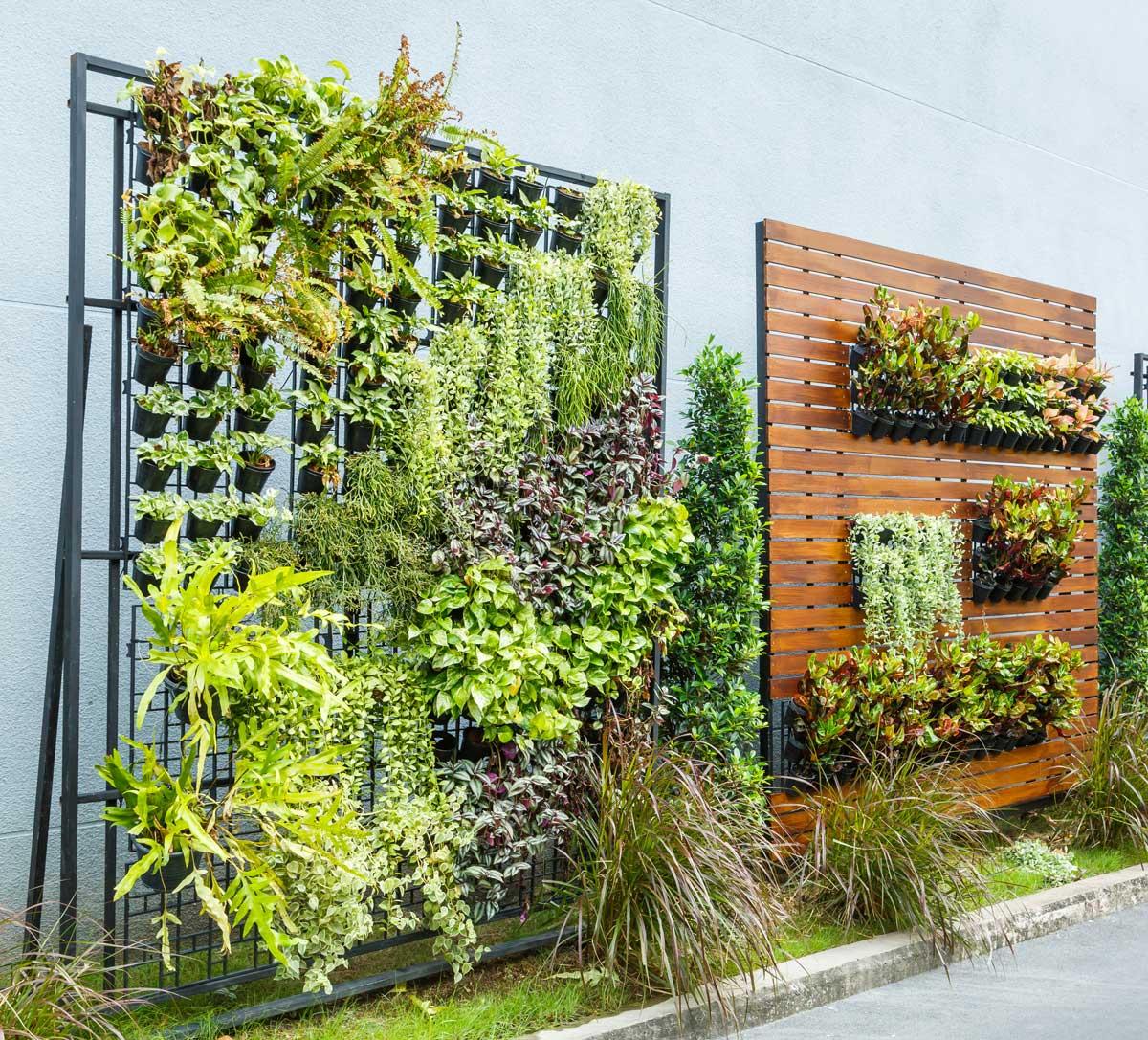 Vertikaler Garten als Sichtschutz an der Terrasse
