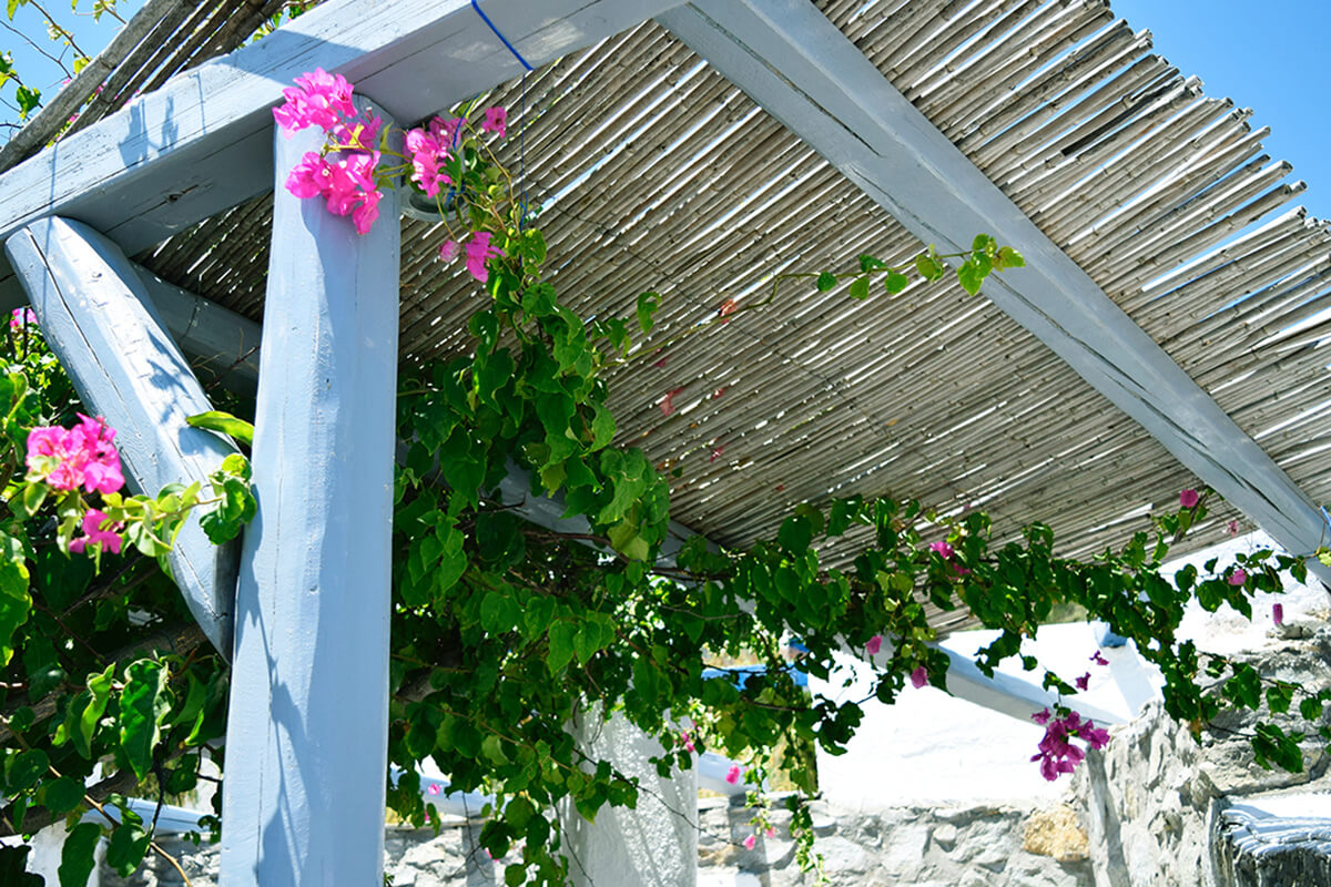 Sonnenschutz und Kletterpflanzen als Terrassenüberdachung