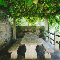 terrassenueberdachung-kletterpflanzen-natursteinmauer