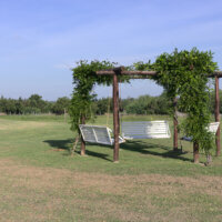 terrassenueberdachung-pergola-sitzecke-kletterpflanzen