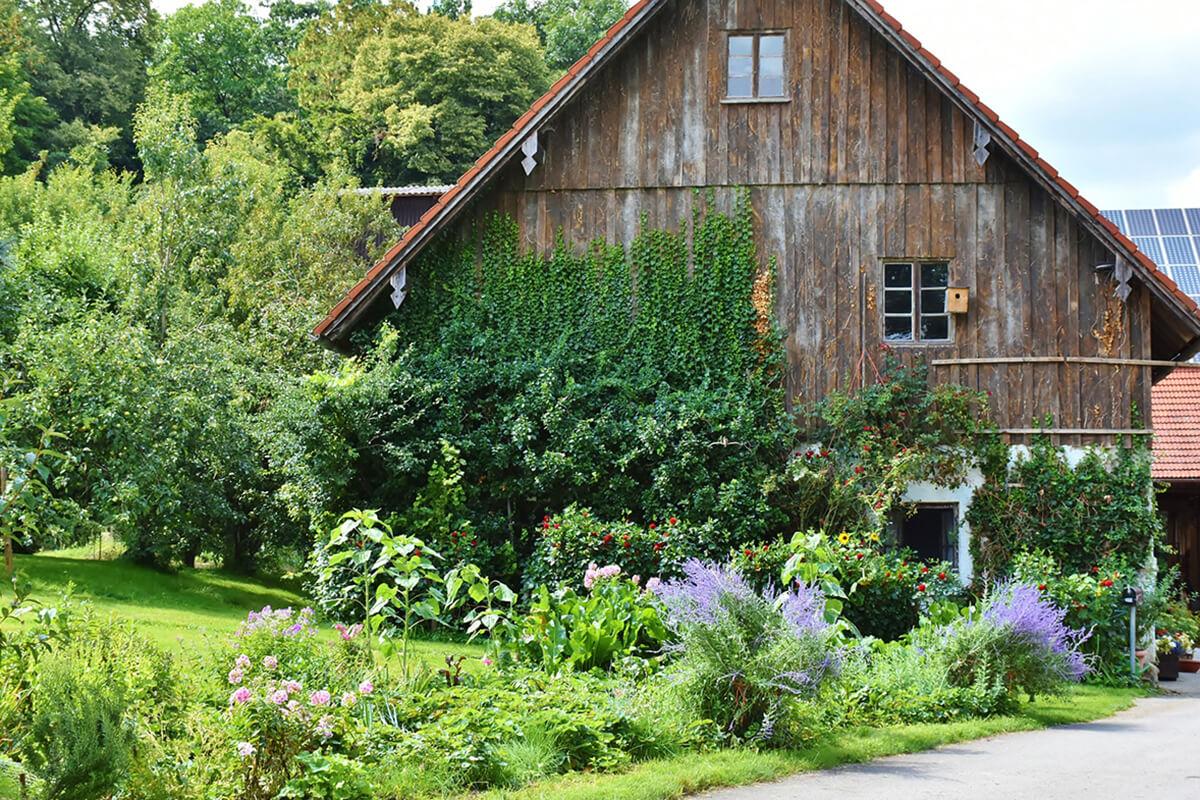 Stauden und Kletterpflanzen im Landhausgarten