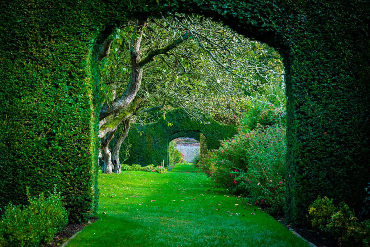 Saftig grüner Rollrasen im englischen Garten