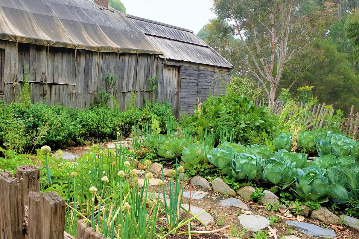 Beeteinfassungen um Gemüsebeete im Cottagegarten