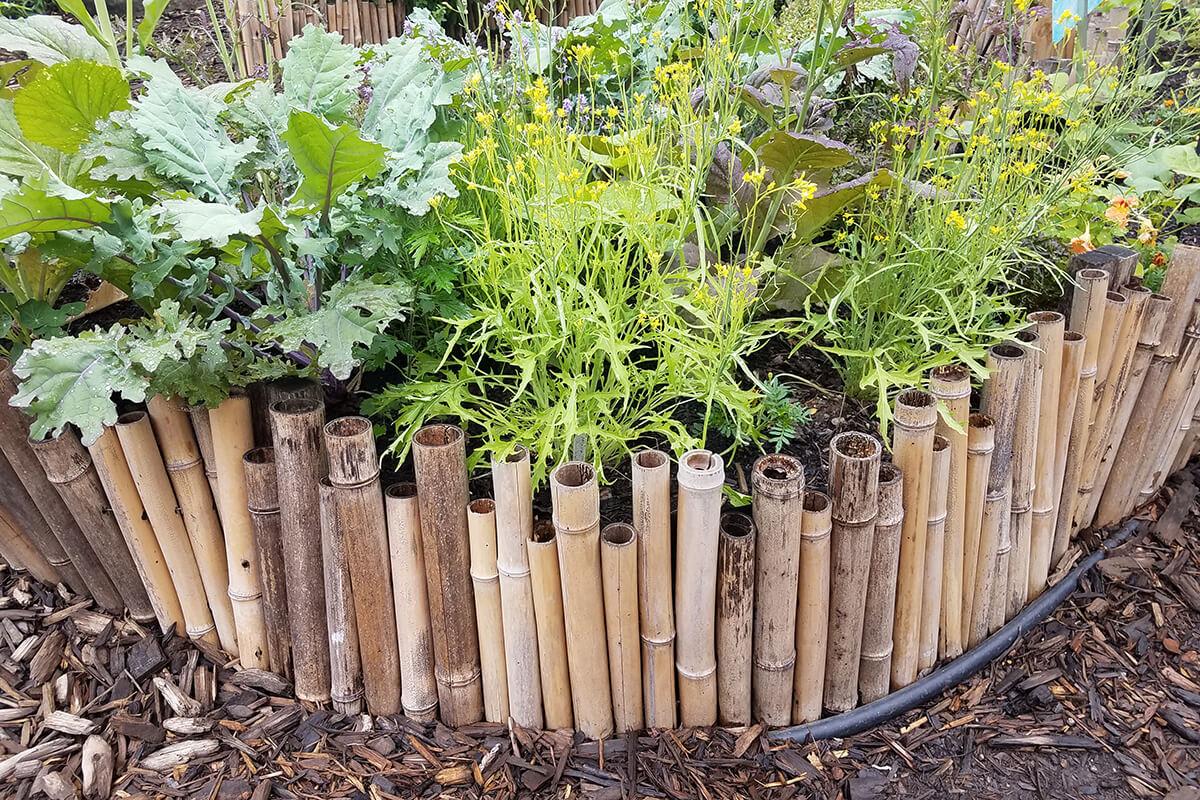 Beeteinfassung aus Bambus