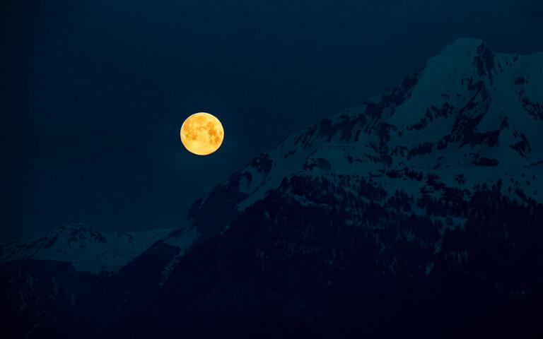 Mondkalender ▷ Bedeutung der Mondphasen für Garten & Co.