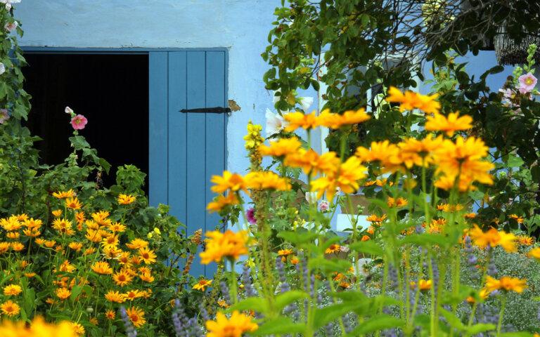 Bauerngarten & Cottage Garten anlegen & gestalten ▷ 25 Bilder