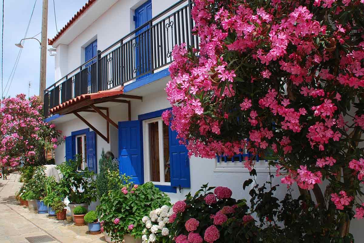 Haus mit Oleander und blauen Fensterläden