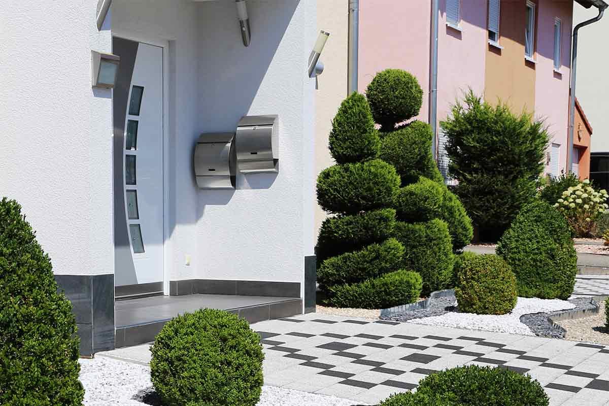 Buchsbaum in Spiralform