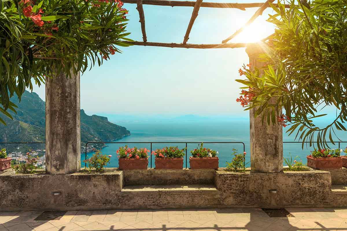 Oleander auf einer Terrasse