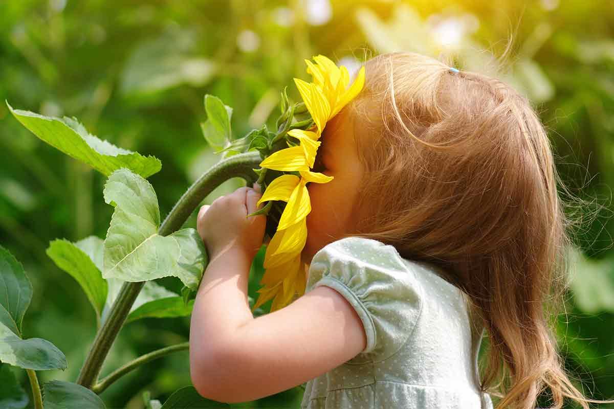 Kleines Mädchen mit Sonnenblume