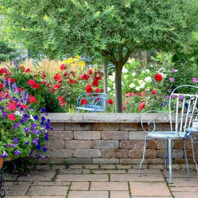 Hibiskus ziert mit anderen Blumen jede Terrasse
