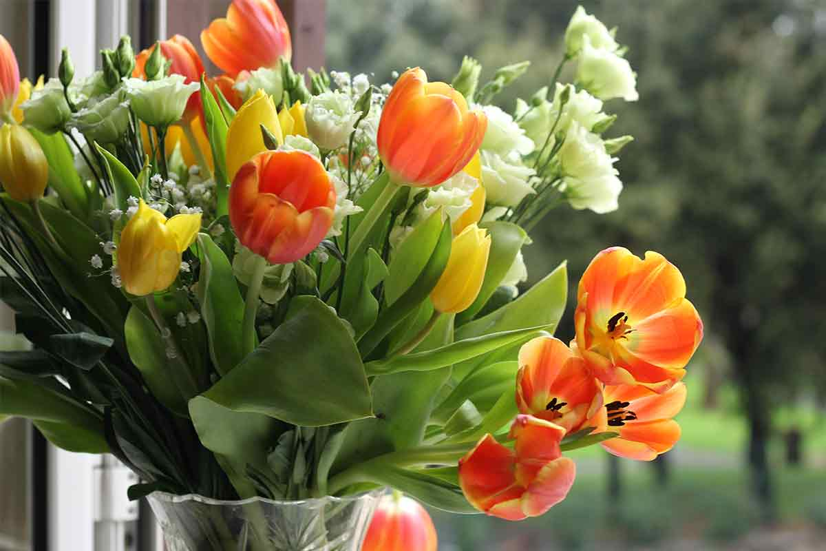 Gelbe und orangene Tulpen im Strauß