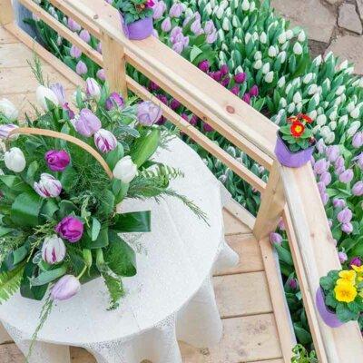 Tulpenstrauß auf einem Balkon