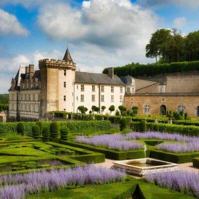 Salbei ziert einen Schlossgarten