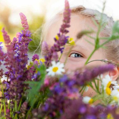 Salbei im duftenden Blumenstrauß