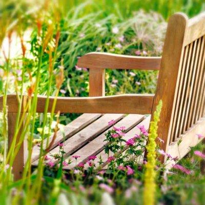 Holzbank in einer Blumenwiese
