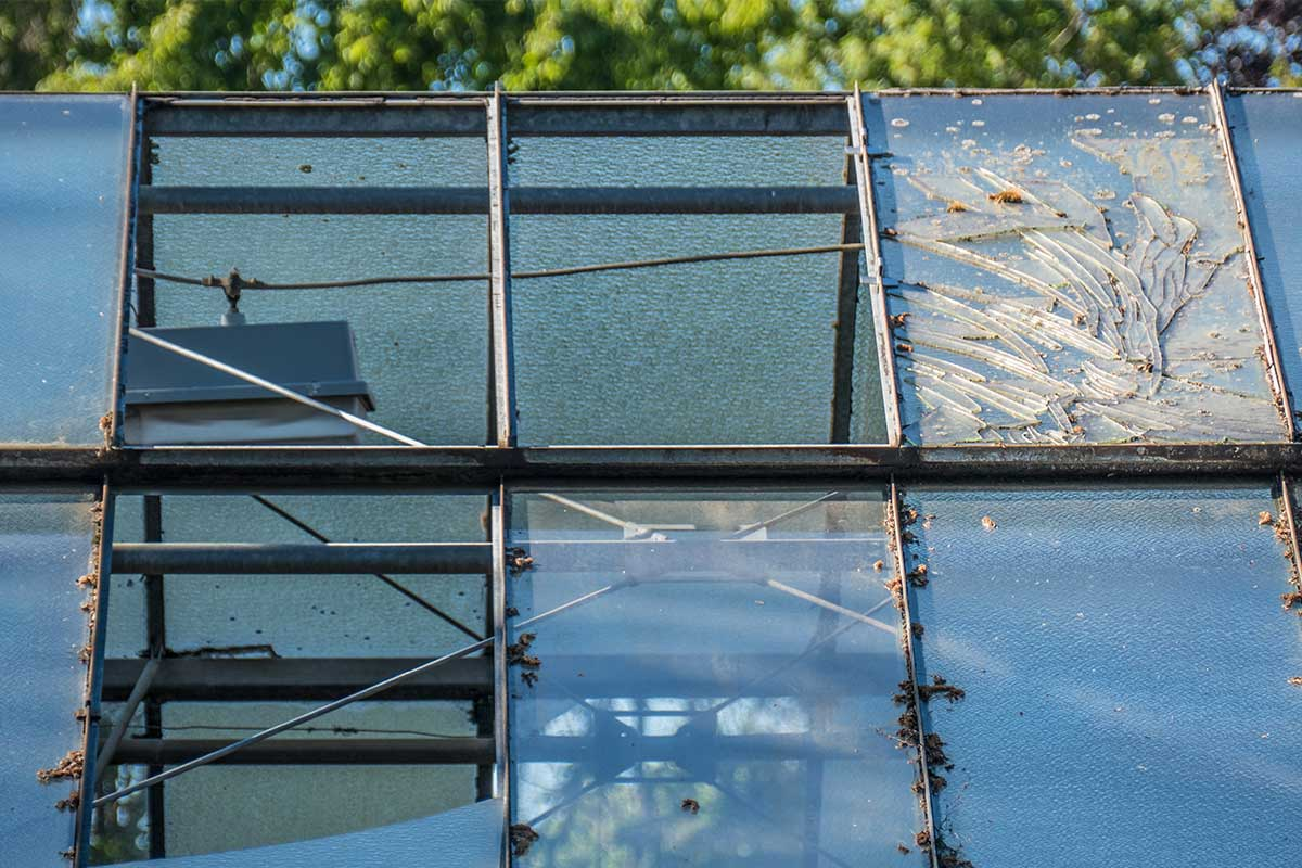 Gebrochenes Glasdach eines Gewächshauses