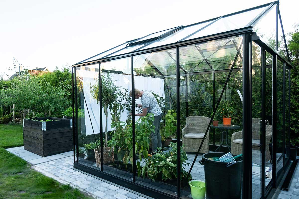 Glasgewächshaus mit Mann im Inneren