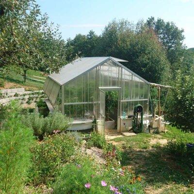Gewächshaus im grünen Garten