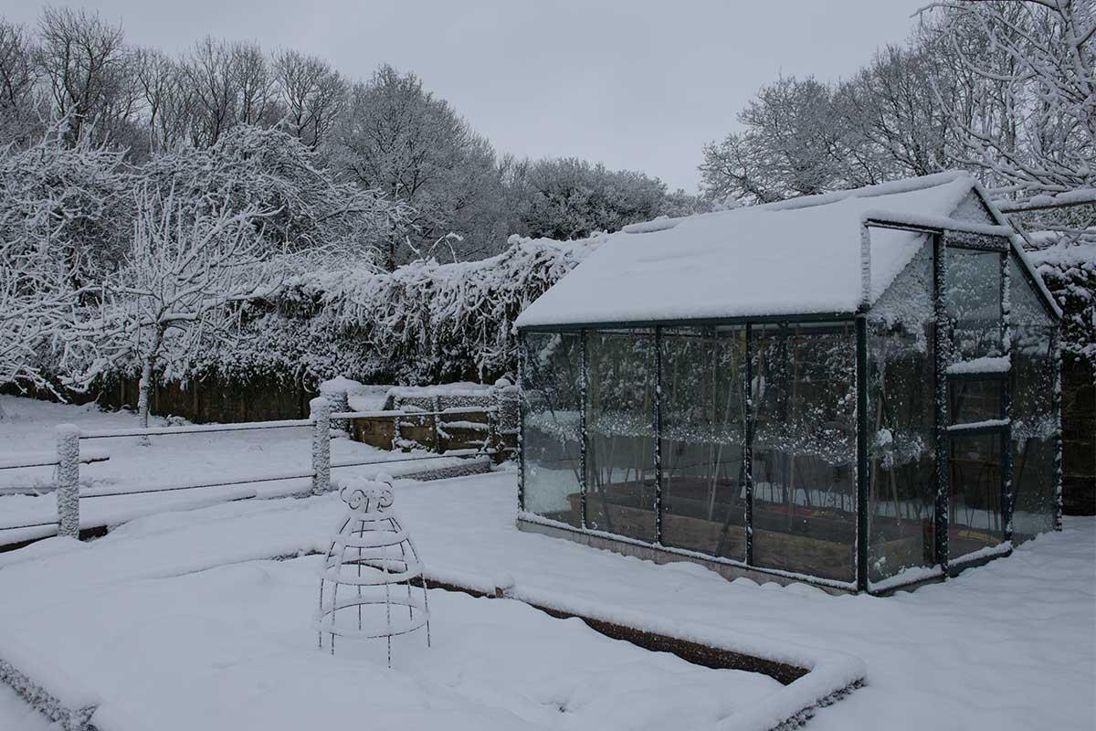 Gewächshaus im verschneiten Garten