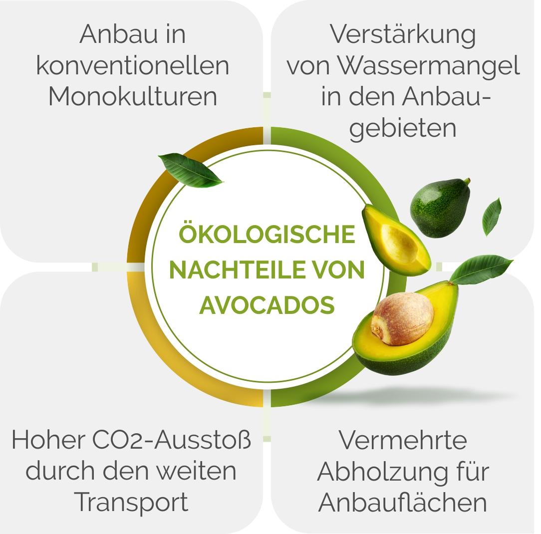 Grafik zu ökologischen Nachteilen der Avocado
