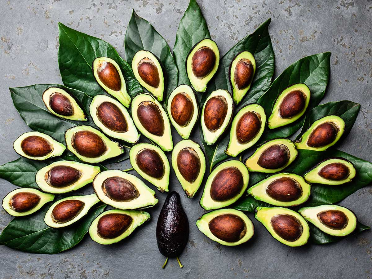 Avocado-Hälften in Pfau-Form