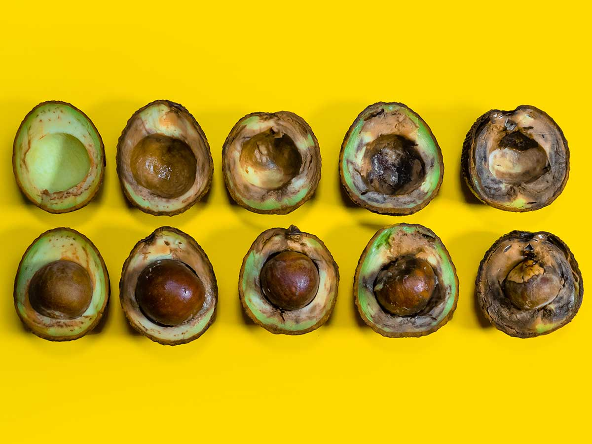Avocados aufgereiht reif bis faul